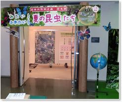 神奈川県立地球市民かながわプラザ内