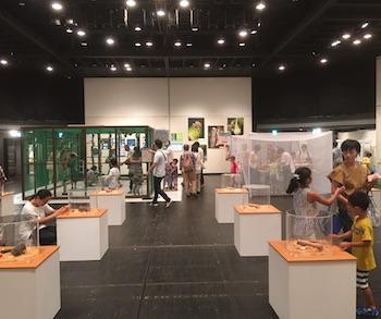 あべのハルカス近鉄本店近鉄アート館展示の様子